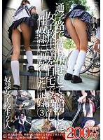 ZRO-085-誘拐女子校生