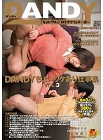 DANDY-486B-各种职业企画  竹内れい子