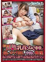 AP-623-泥酔巨乳女子●生 中出癡漢姪子友達...