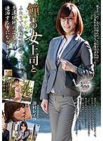 熟女の女上司 澤村レイコ