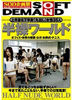DMS-019-半裸ワールド