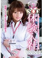 STAR-286-SOD體験入社 SARAH [DOD]