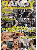 DANDY-488-女子発情期 葉山めい