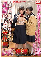 NTB-131A-女子校生服痴漢