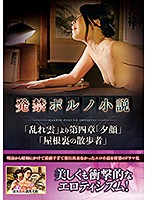 JARB-016A-発禁小説-多田淳子